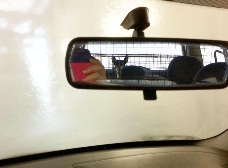 ledikummissaanautossa